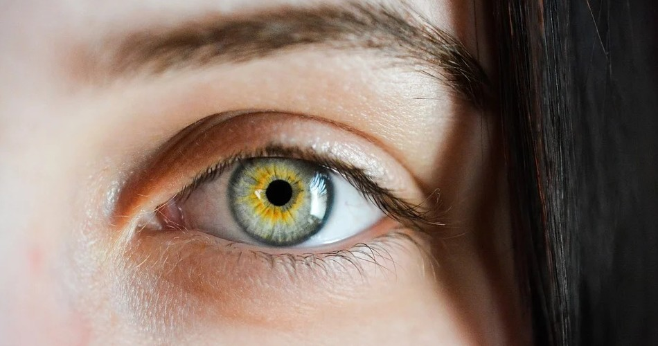 Cuida de tu vista: elige a los mejores profesionales